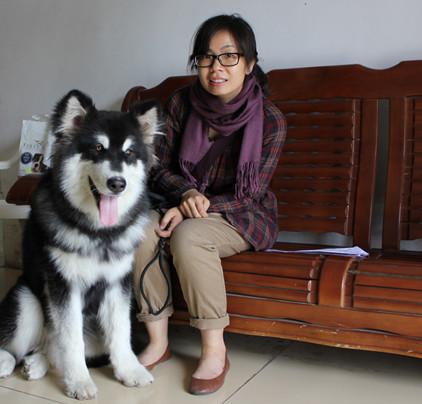 宠物学校 宠物培训